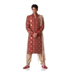 Sherwani: Ref S609